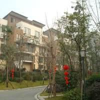 温江小区图片