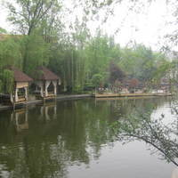 成都世纪城天鹅湖花园图片