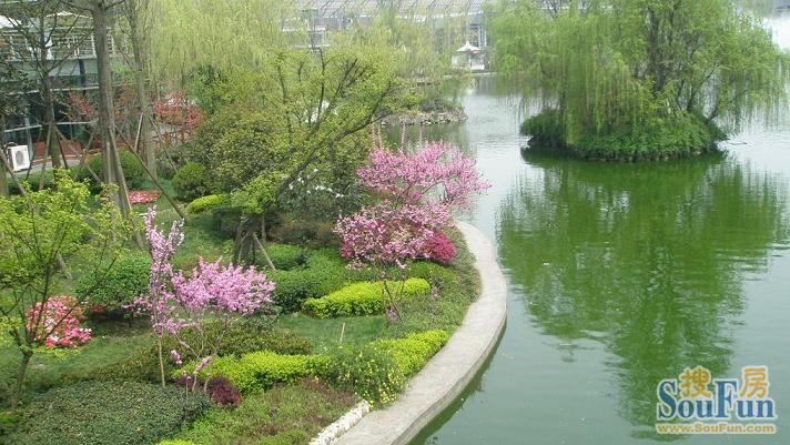 成都世纪城天鹅湖花园小区图片