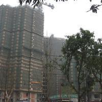 成都神仙樹3號外景圖