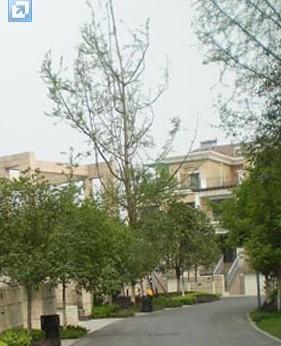 中海国际别墅