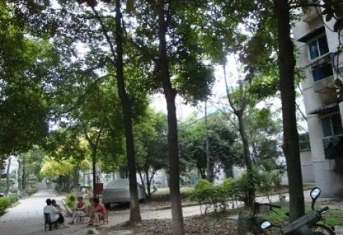 武汉104街坊外景图