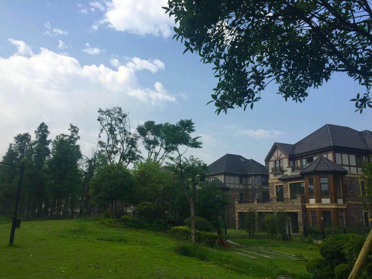 推推99房产网金科廊桥水乡在售新房房源图片