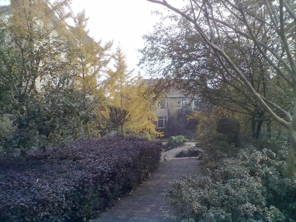 成都维也纳森林别墅外景图