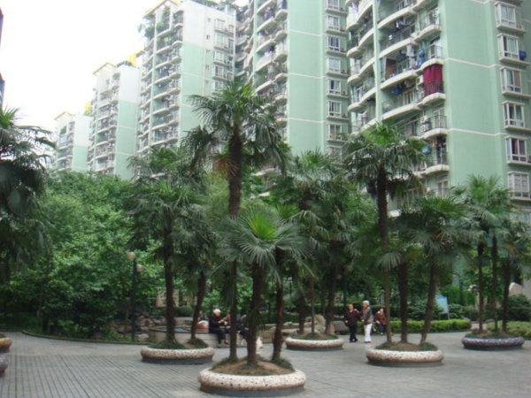 推推99重庆房产网艾佳沁园外景图