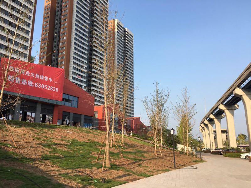重庆中国摩外景图