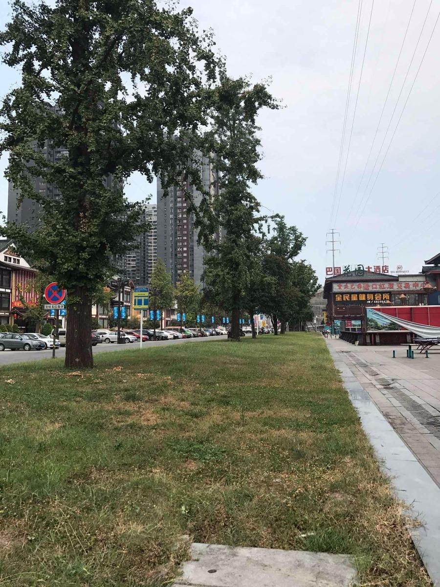 重庆金科西城大院外景图