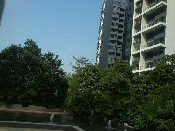 推推99惠州房产网中信水岸城出租房房源图片