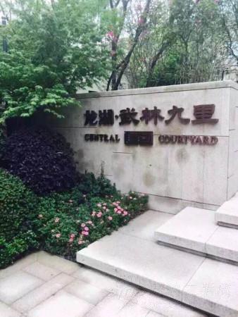 杭州龙湖武林九里图片