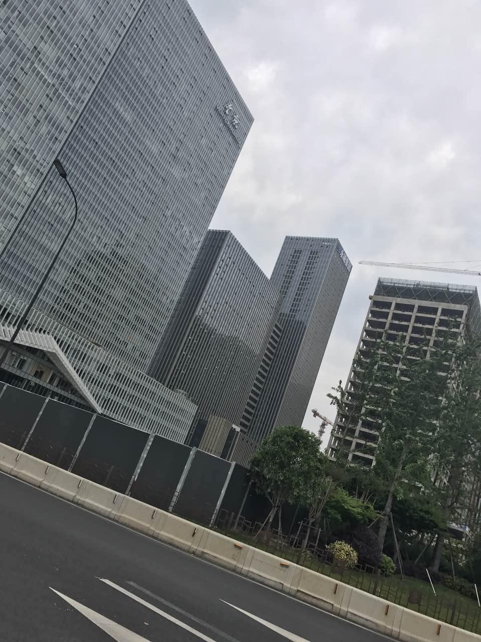 杭州港丽望京外景图