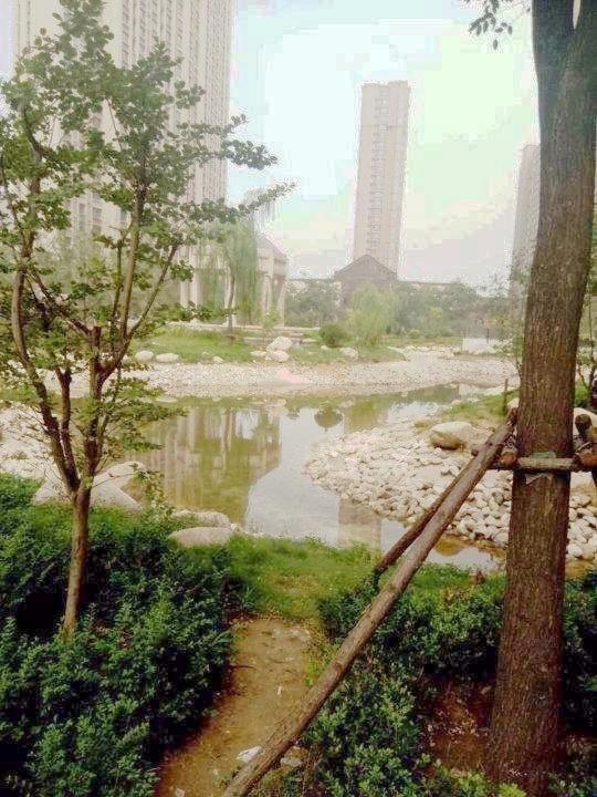 祥泰森林河湾房源图片