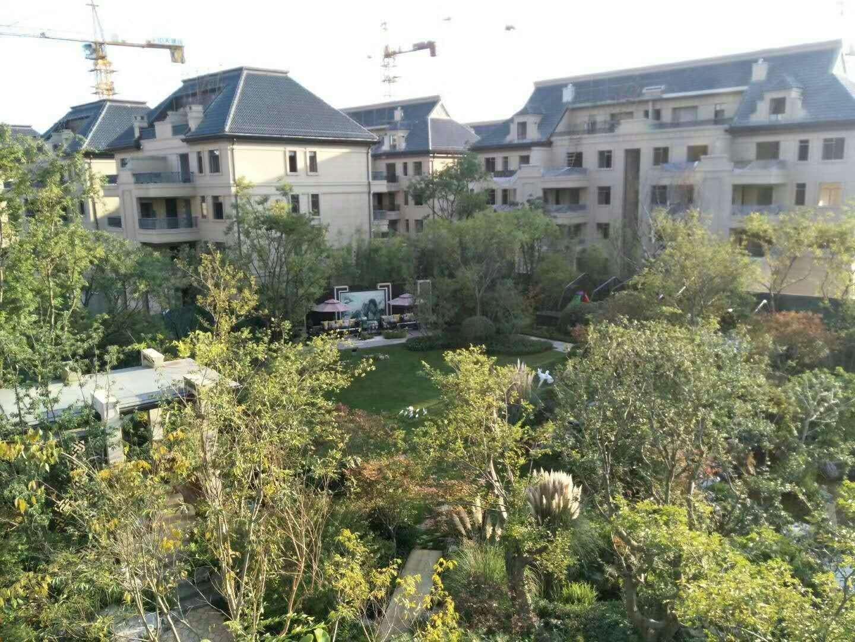 推推99房产网绿地海珀澜庭别墅在售新房房源图片
