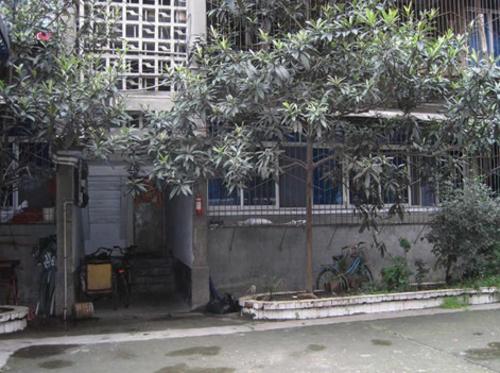 0套   所在区域: 锦江 - 红星路   小区地址: 红星路东新街  [地图]