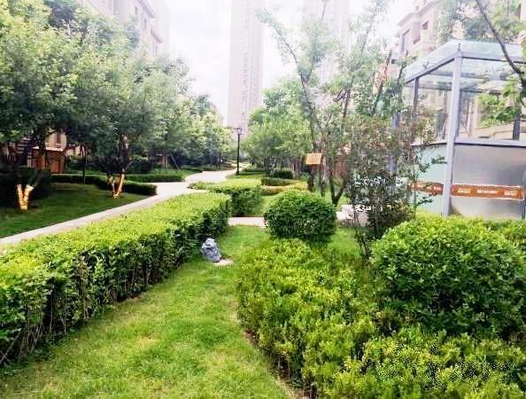 推推99沈阳房产网沿海赛洛城出租房房源图片