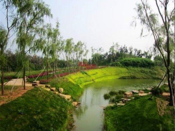 推推99房产网绿地海域香廷在售新房房源图片