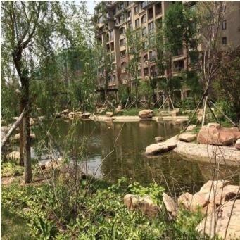 隆河谷房源图片