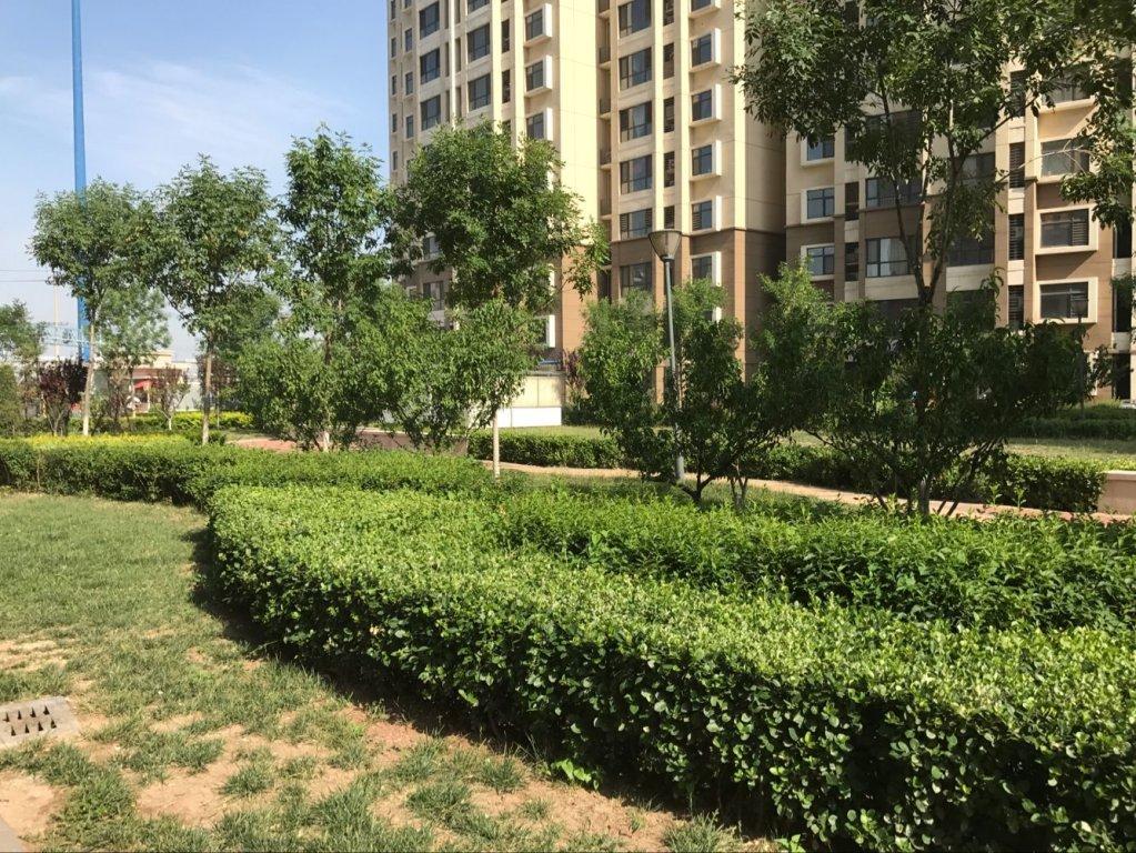 推推99天津房产网枫桦园外景图