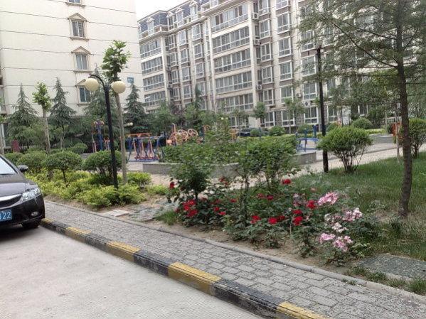 推推99郑州房产网富田太阳城出租房房源图片