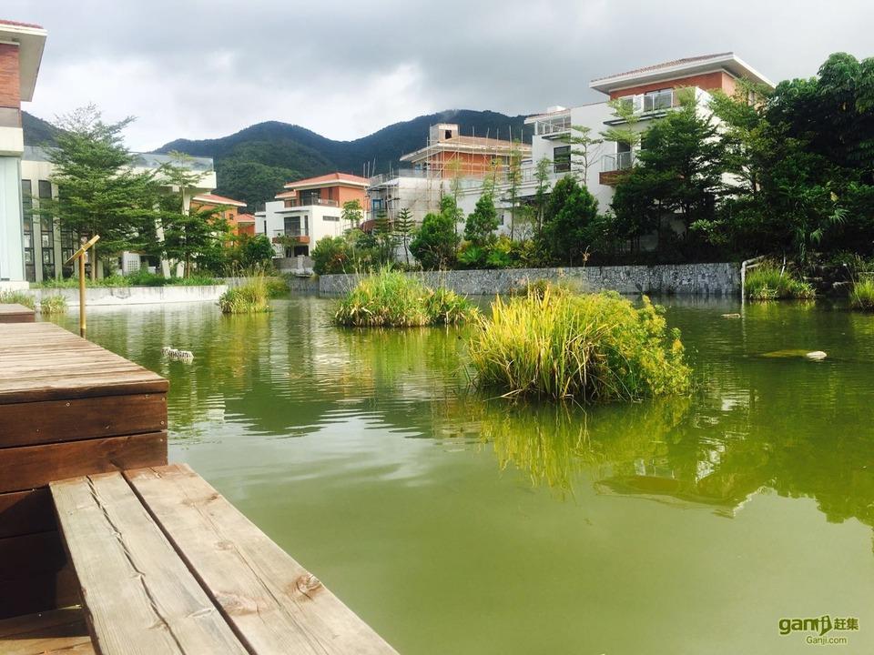 推推99房产网惠州在售新房房源图片
